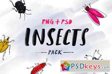 Insects - Sketched Pack