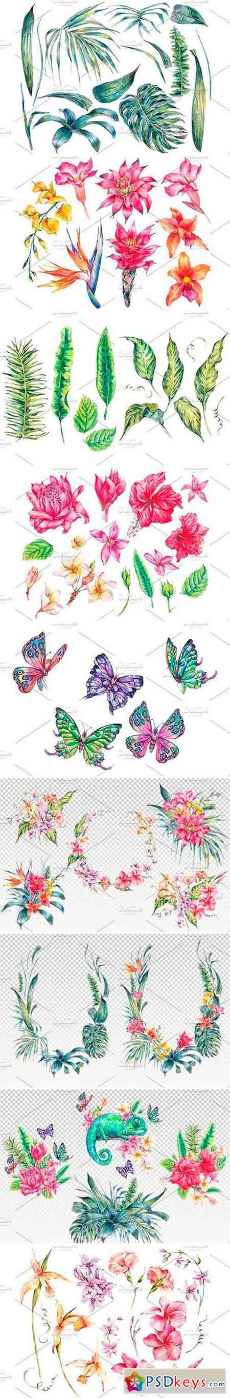 Summer Time, Tropical Flowers Collection - watercolor clipart bundle