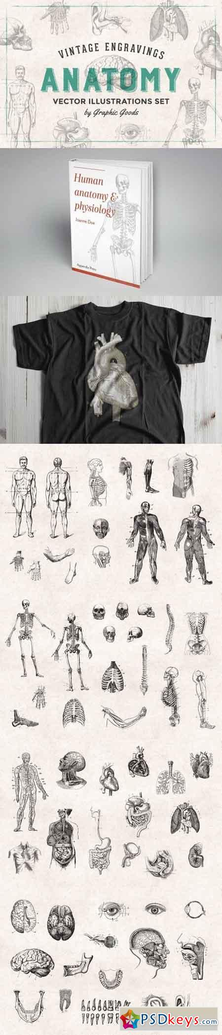 Old Fashioned Anatomy Coloring Book Torrent Ideas - Coloring Page ...