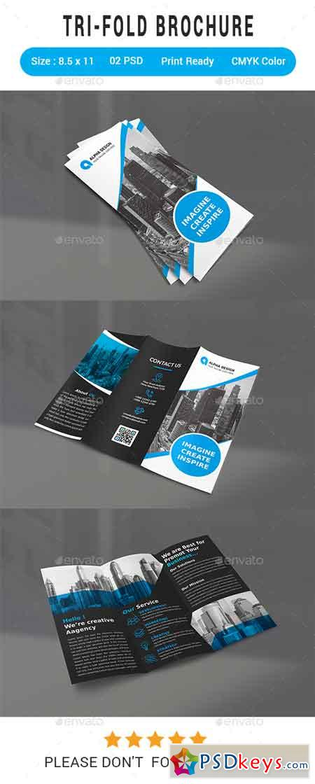 Trifold Brochure 22095077