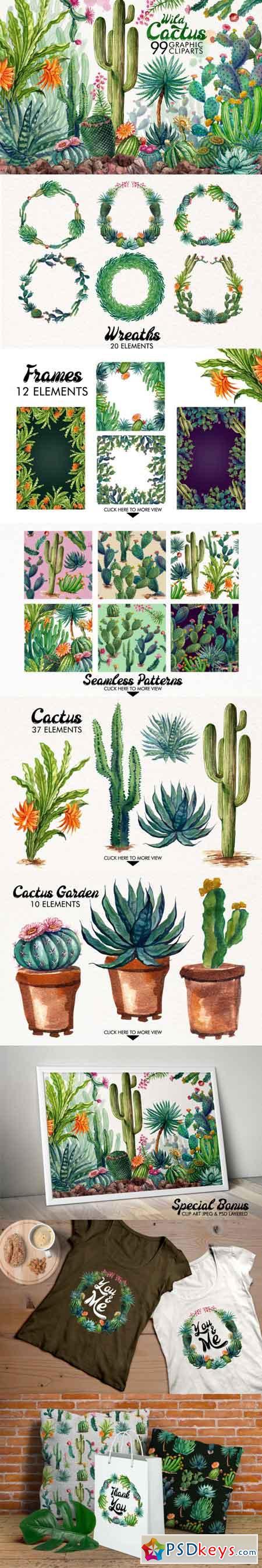 Watercolor Cactus 3463789
