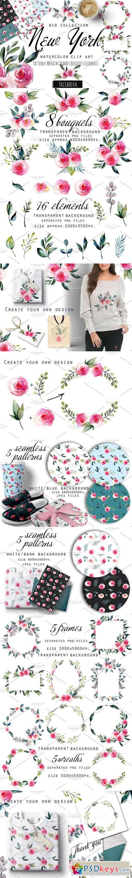 New York Roses watercolor clipart 2695419