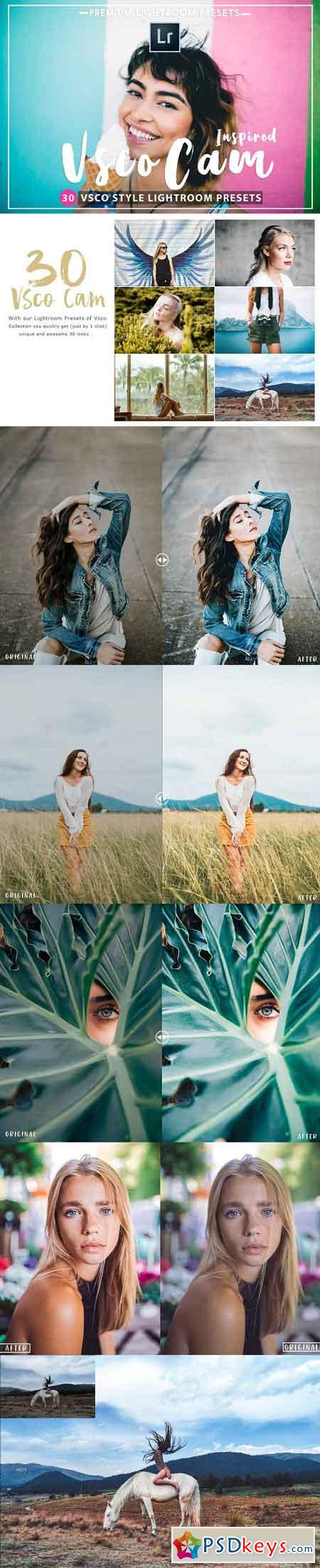 30 VSCOcam Inspired Lightroom Preset 2636794
