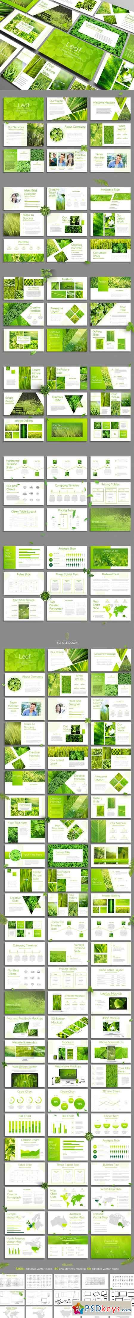 Leaf - Powerpoint Template 2682247