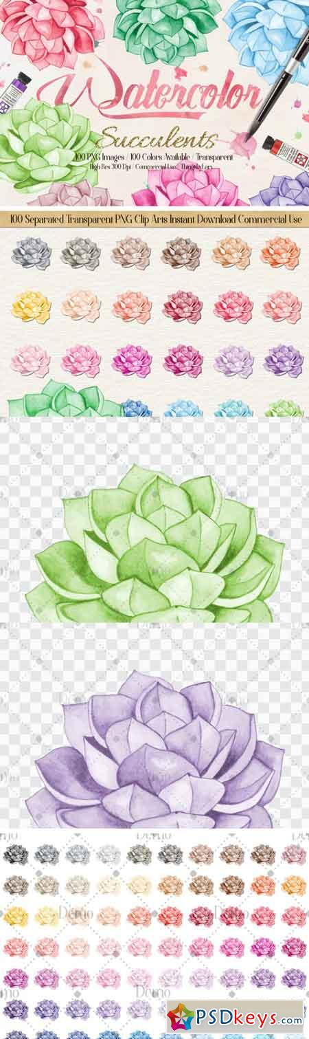 100 Hand Painted Watercolor Succulent Clip Arts 3463199