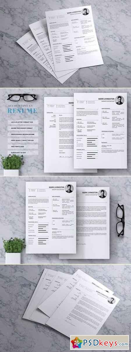 Accounting Accountant CV Resume