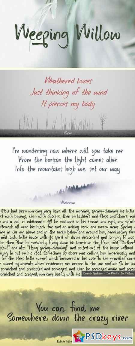 Weeping Willow Font - 2 Font