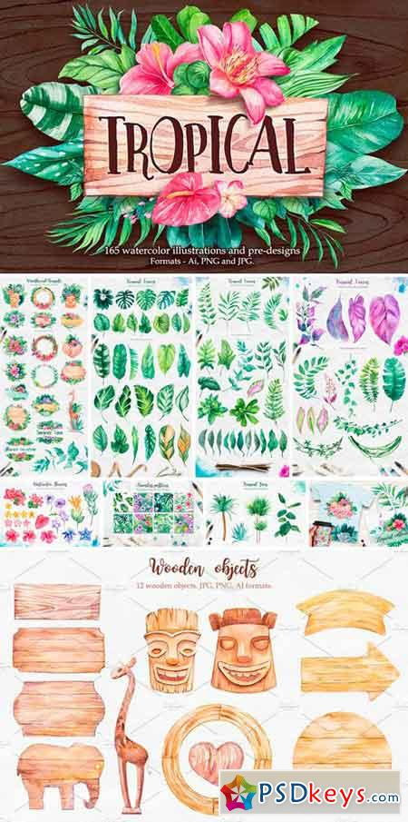 Tropical Watercolor illustrations 2379405