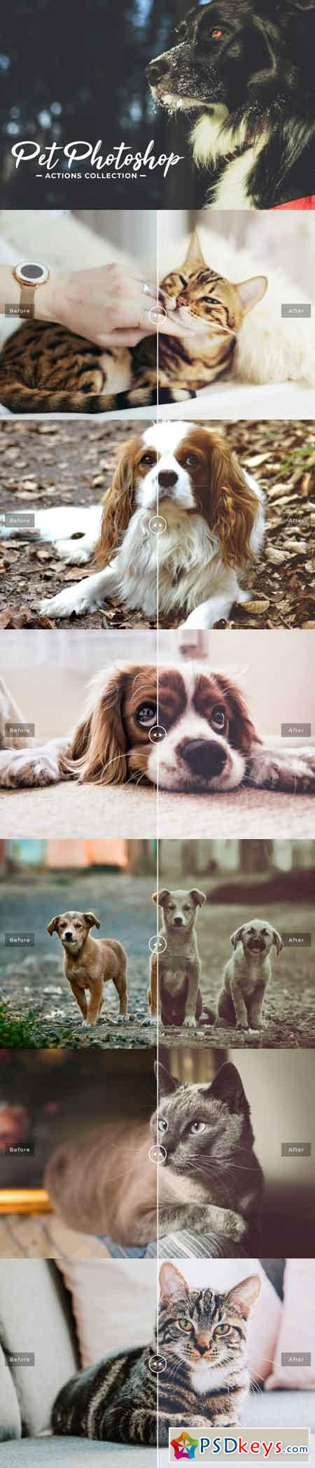 Pet Photoshop Actions Collection 3470628