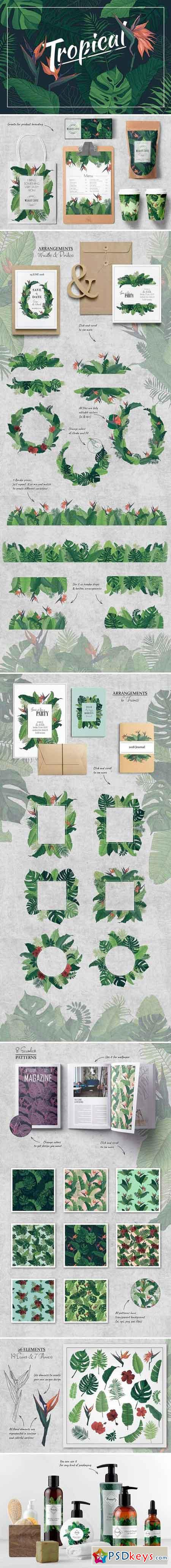 Tropical Set Patterns & Elements 2544934