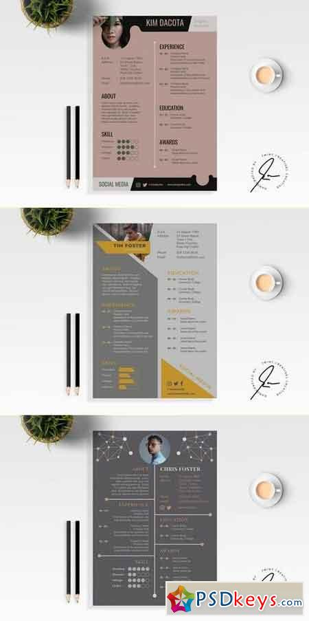 Resume CV Template Bundle 2
