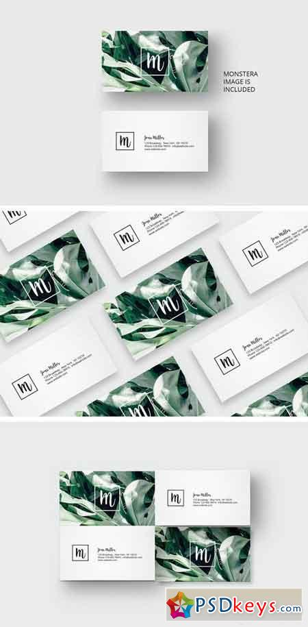Business card template with monstera 1677870