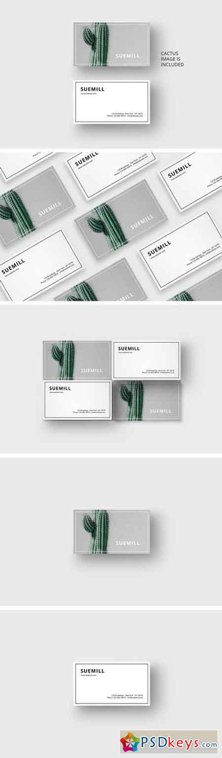 Business card template with cactus 1688053