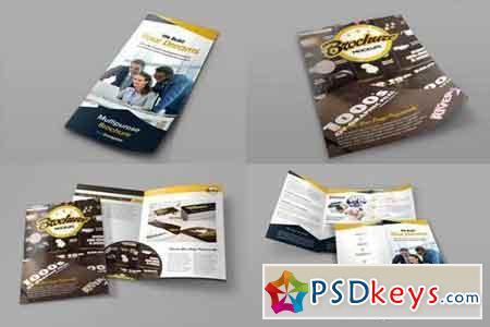 Bifold and Trifold Brochure Mockups