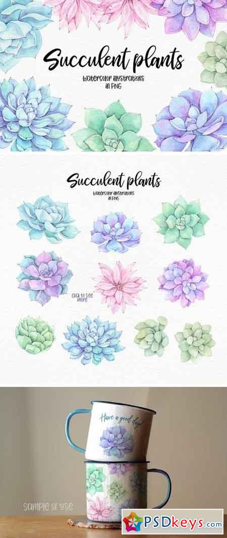 Succulent plants Watercolor set 2196092