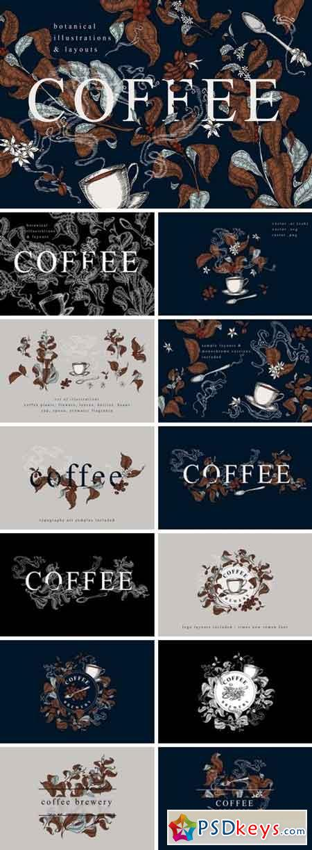 Coffee Botanical Collection 2774987