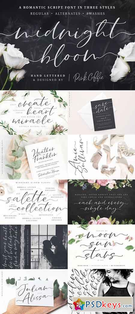 Midnight Bloom Script Font + Swashes 2867579
