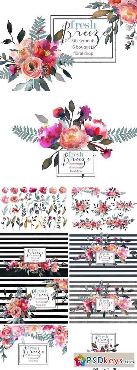 Peach Peonies Watercolor Clipart 900493