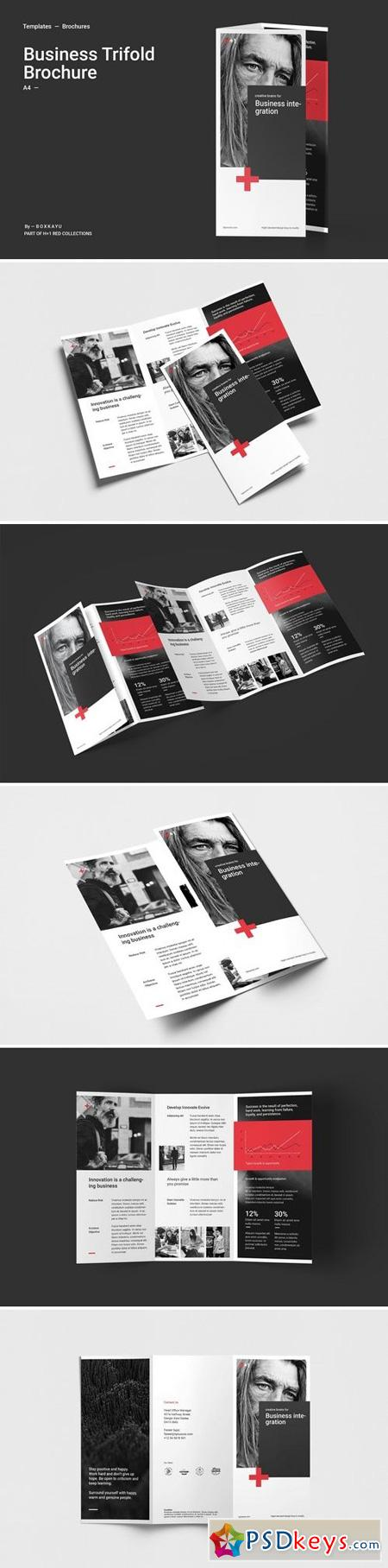 Business Trifold Brochure 2898082