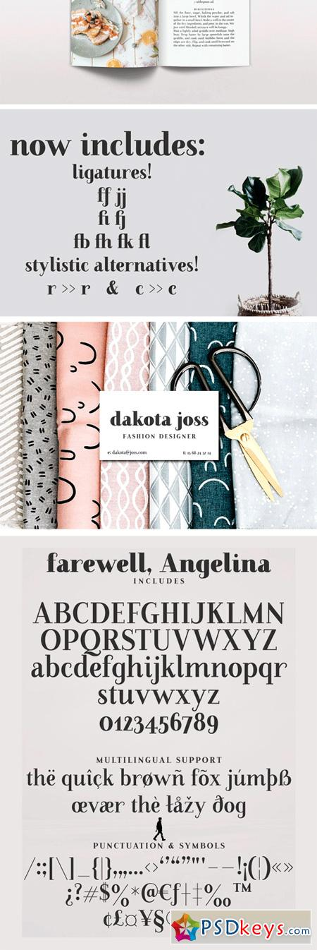 Farewell Angelina Display Font 2521420