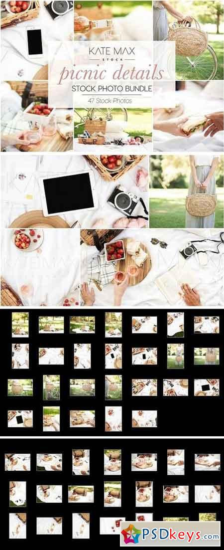 Modern Neutral Picnic Details Bundle 2749189