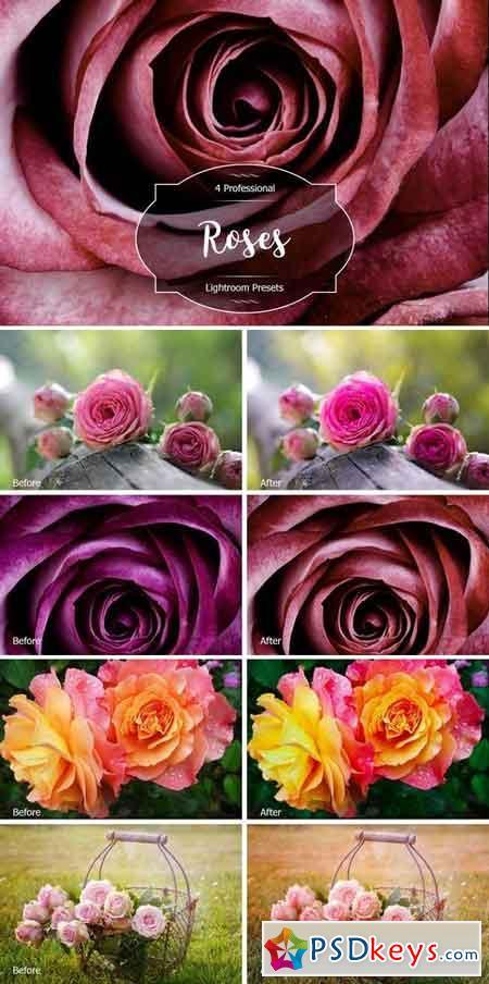 Roses Lr Presets 2947513