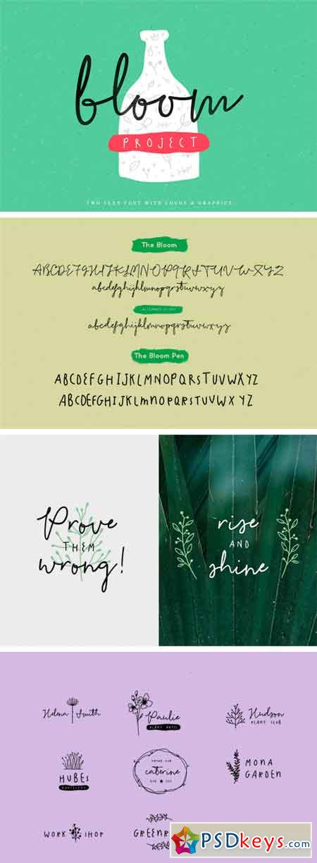 The Bloom Typeface