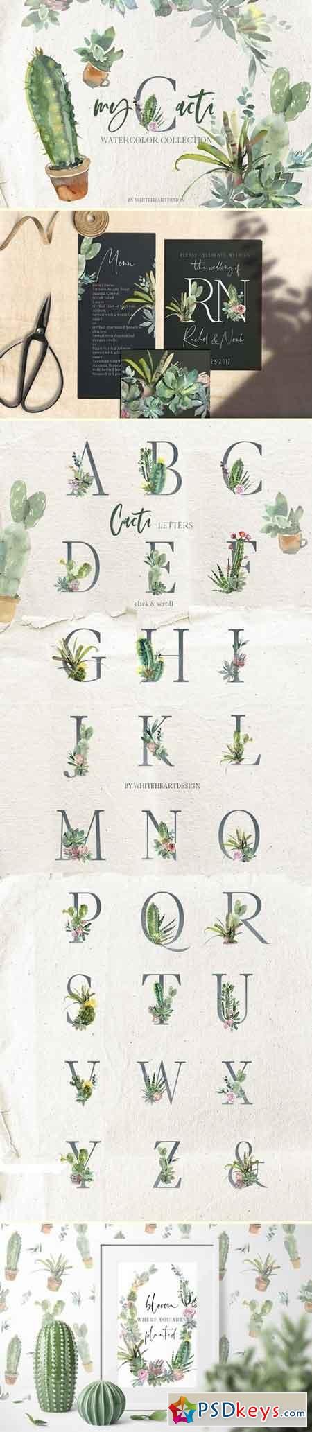 Cacti Watercolor Cactuses Clipart 2917005