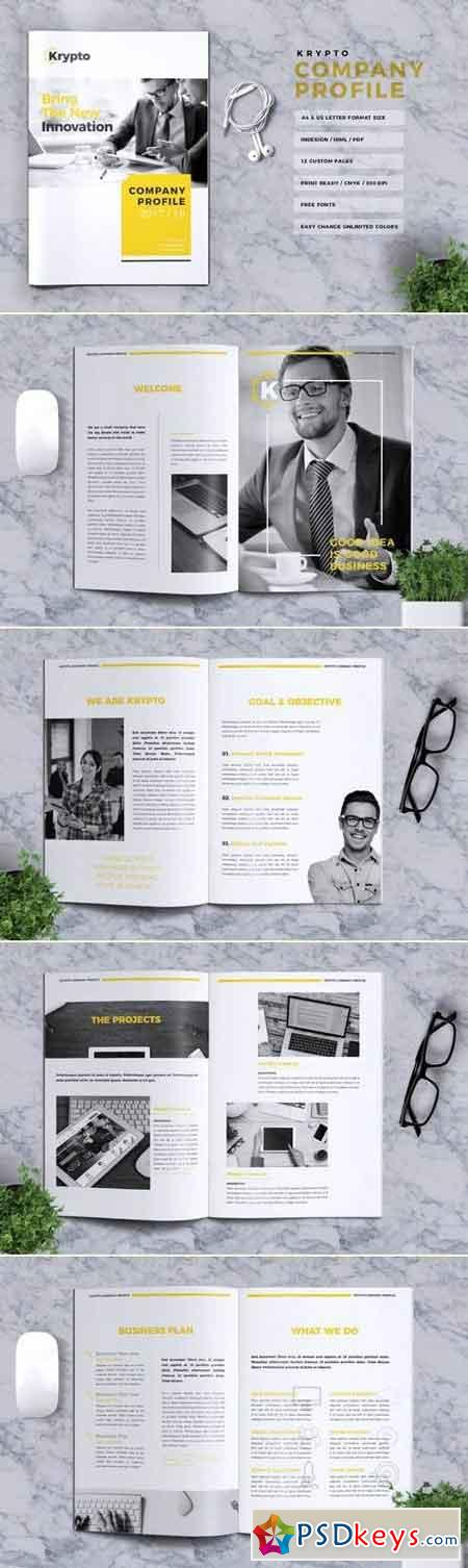 Krypto Company Profile Brochure