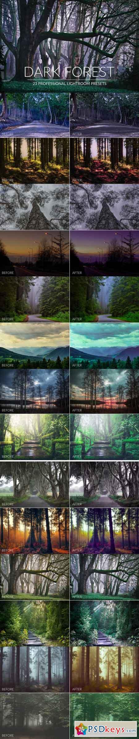 Dark Forest Lr Presets