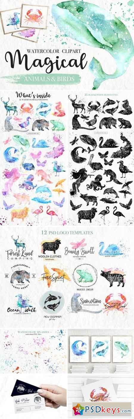 Watercolor Magical Animals 2671254