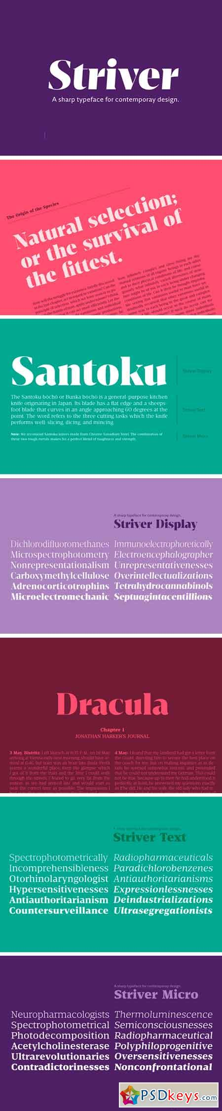 Striver Superfamily