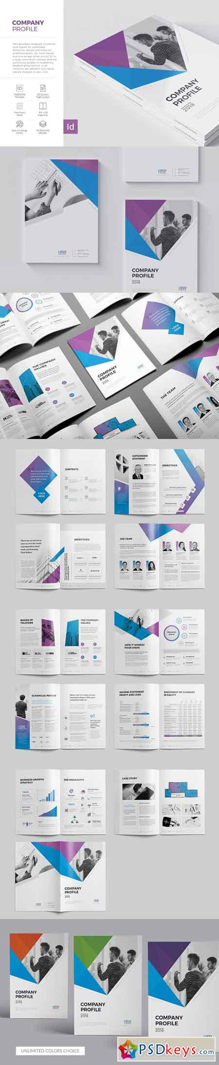 Company Profile 22 Pages 2972141