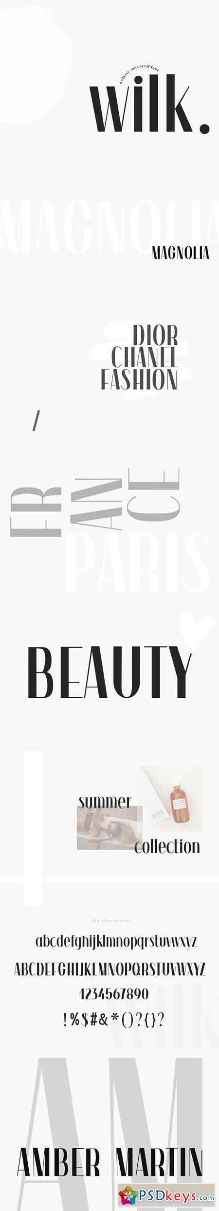 Wilk - A Classy Sans Serif Font 3098023