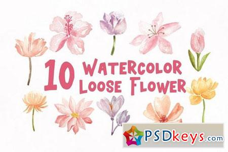 10 Watercolor Loose Flowers Illustration Graphics