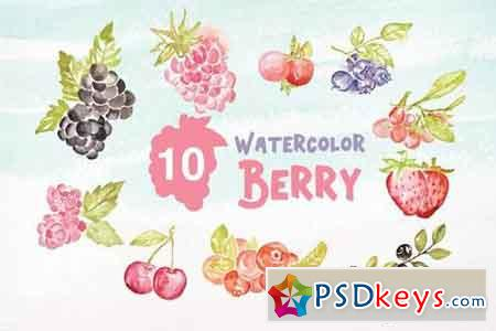 10 Watercolor Berry Illustration Graphics