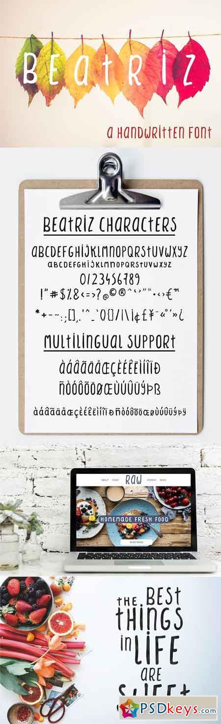 Beatriz sans serif font 2921143
