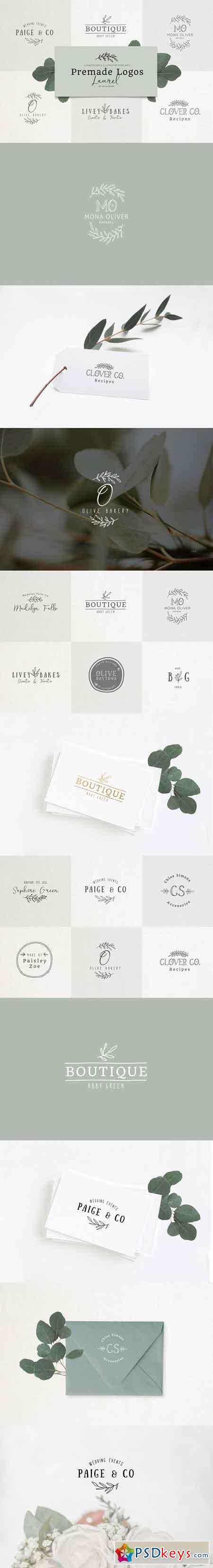 Premade Logo bundle laurel feminine 2926739