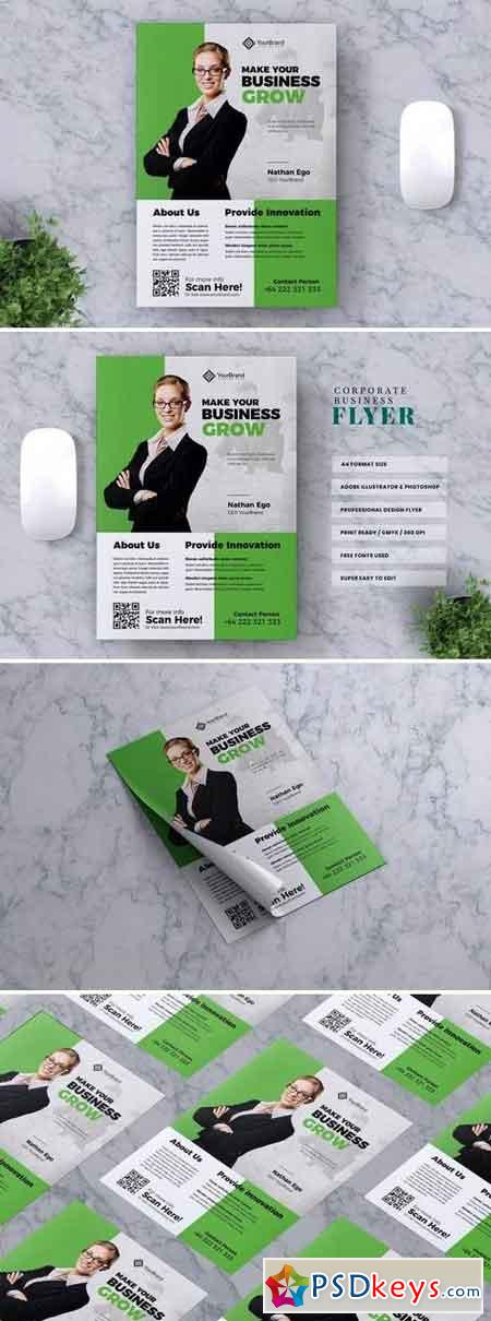 Corporate Business Flyer Vol. 11