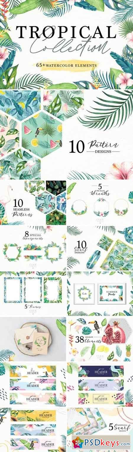 Tropical Collection 3066117
