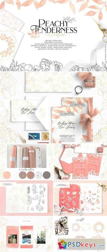 Peachy Tenderness 3174213