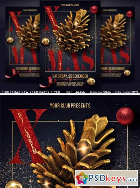 Christmas New Year Party Flyer 3506880