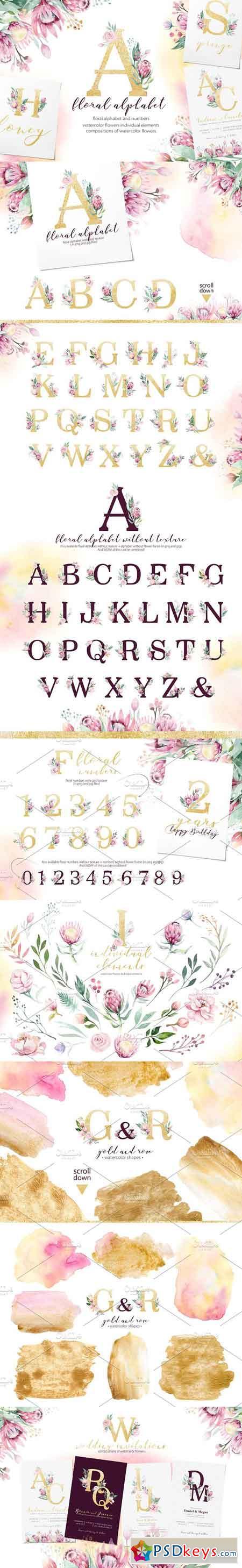 Watercolor Gold & Vinous alphabet 3169423