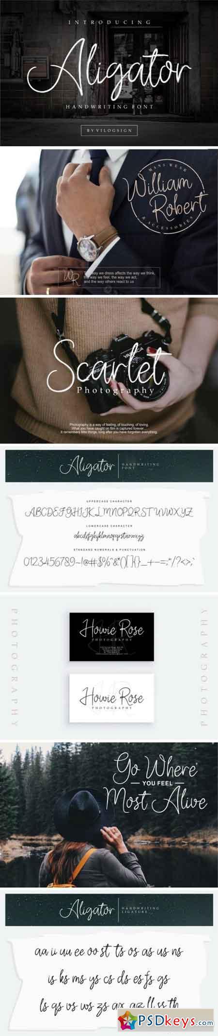 Aligator Font