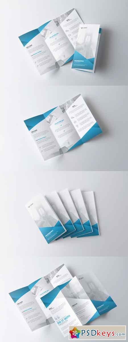 Multipurpose Trifold Brochure 3512564