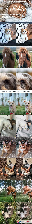 Fur Buddies - Cat, Dog, Pet Presets 3209410