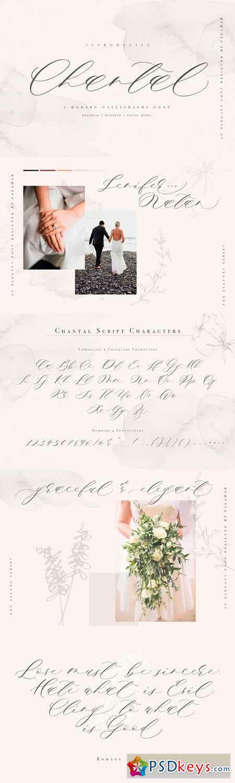 Chantal Script 3260830