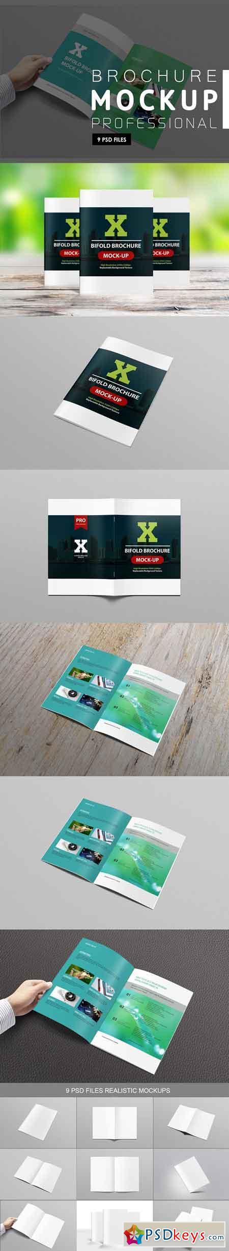 Brochure Mock-ups 3171014