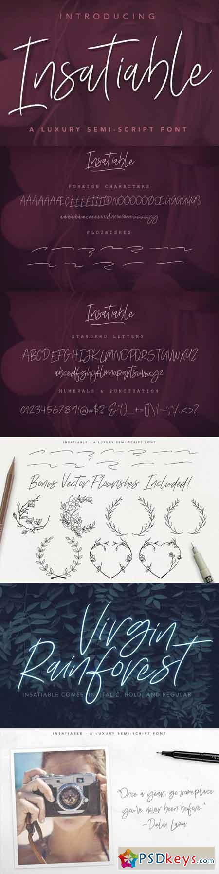 Insatiable Script Font 3512169