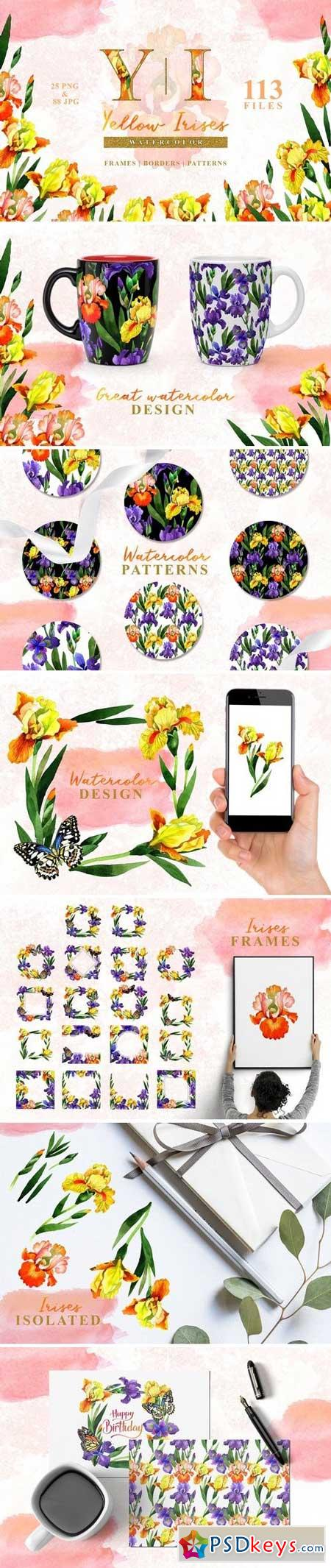Yellow irises Watercolor png 3319894